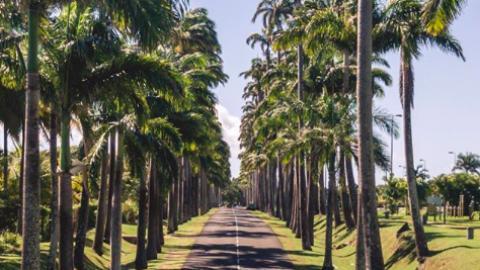 Top 15 des lieux Instagrammables en Guadeloupe